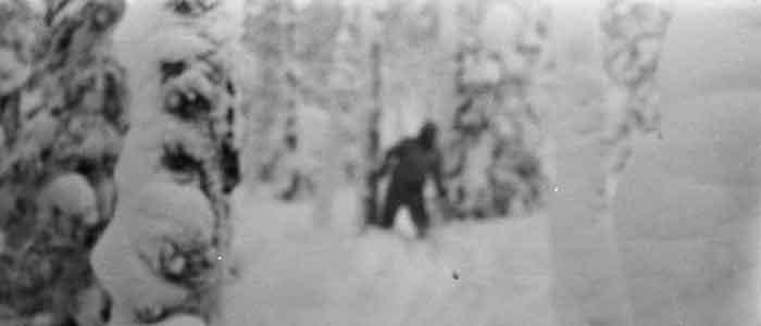Rusya - Yeti (Koca Ayak) Uyarısı - Arşiv