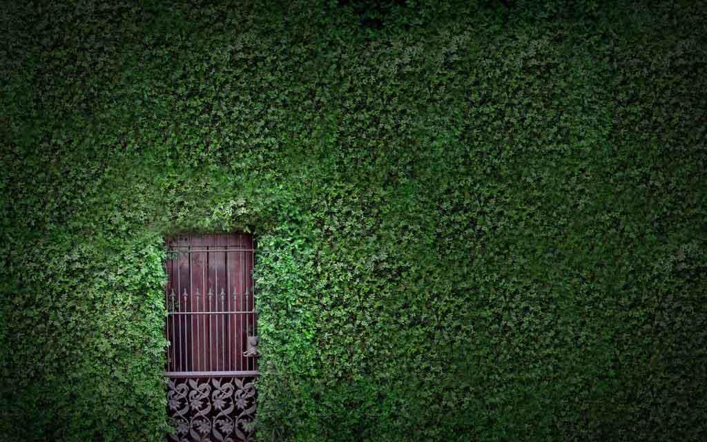 Rüyada 9 kapı görmek 5