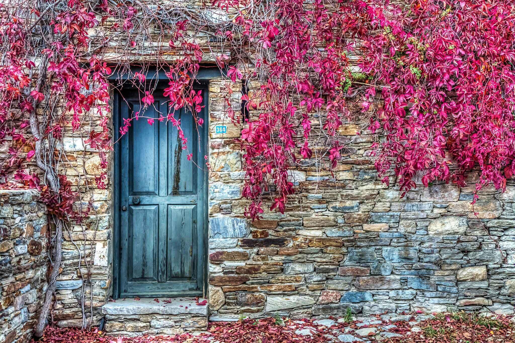 Rüyada 9 kapı görmek 7