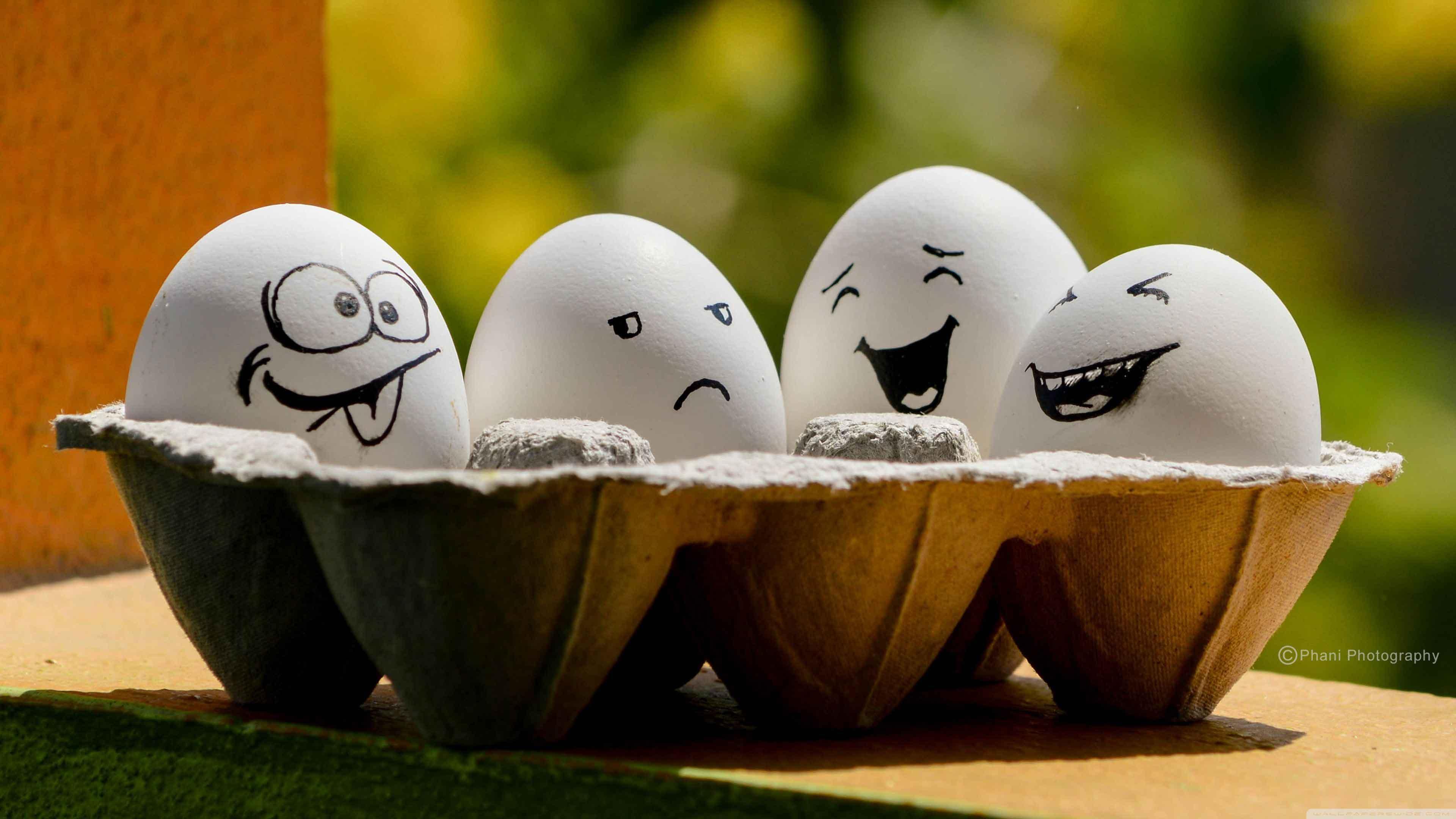 Rüyada 8 yumurta görmek 4